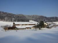 Lindenhof Februar 2012